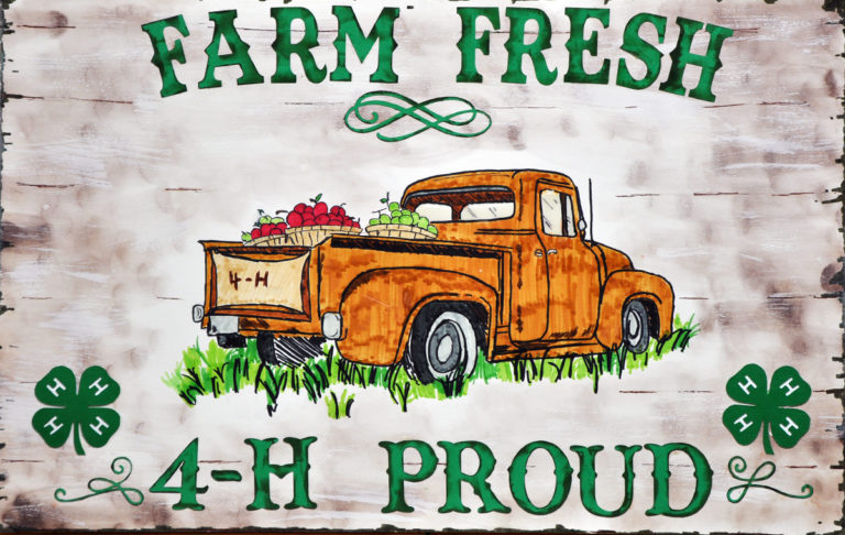 2021 State 4-H Poster Contest Results