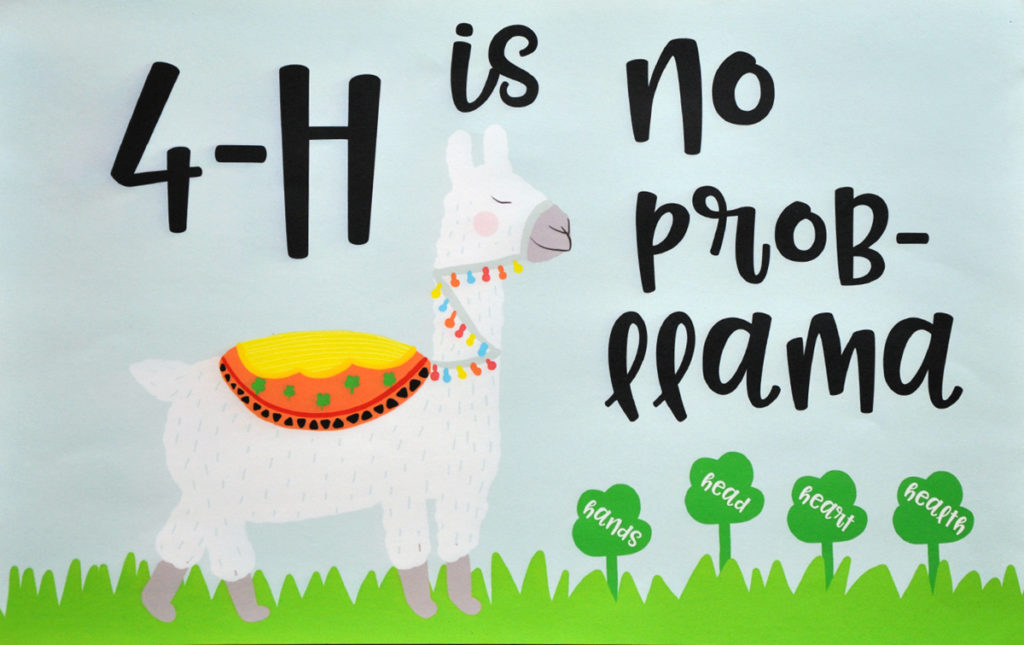 4-H is No Prob-llama