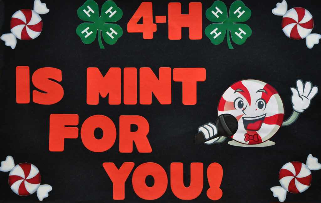 4-H is Mint for You!