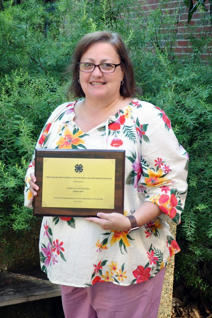2019 Amelia Sturgill Adult Volunteer Award