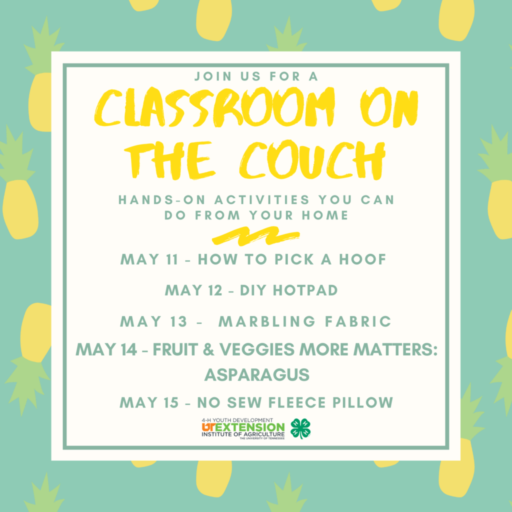 Classroom On The Couch - Version 20 - Issue 17