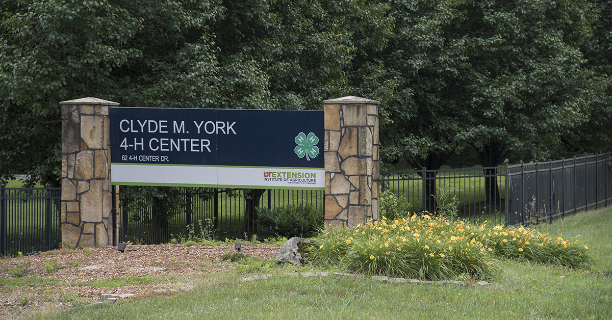 Clyde M York 4-H Camp