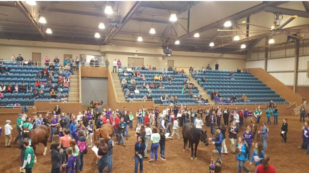 State 4-H Horse Bowl and Hippology 2019
