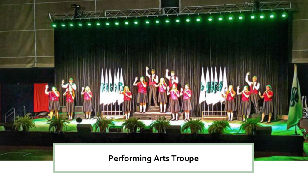 2018 Roundup - Performing Arts Troupe