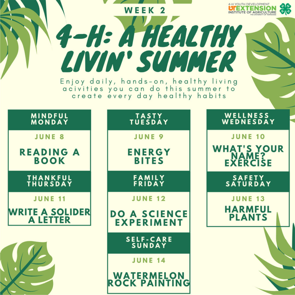 4-H: A Healthy Livin' Summer Week 2
