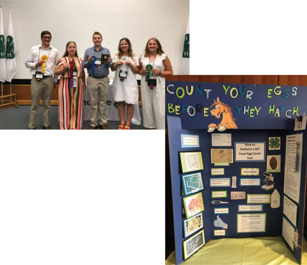 4-H ALL STAR PROJECT EXHIBIT COMPETITION