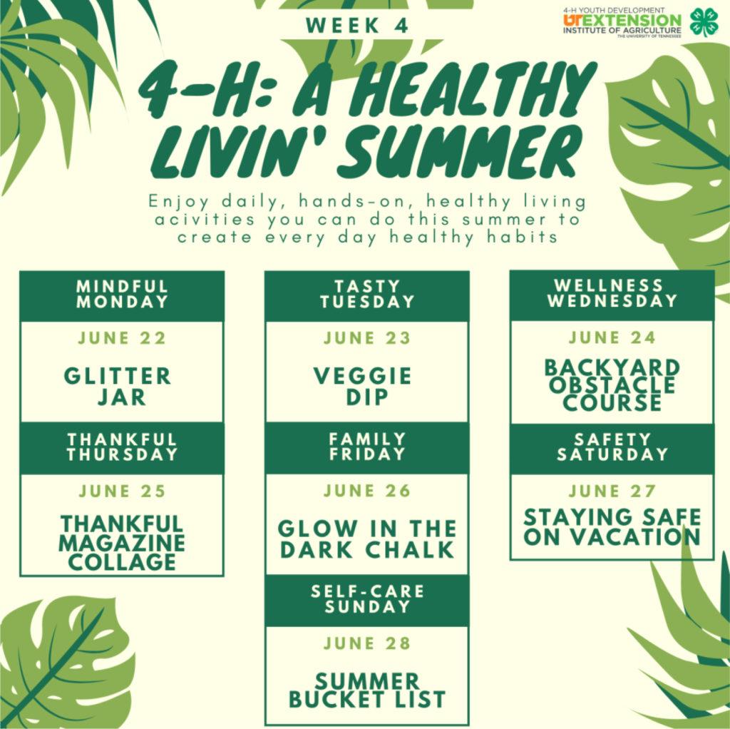 4-H: A Healthy Livin' Summer