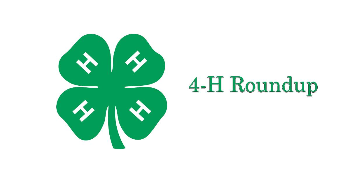 4-H Roundup