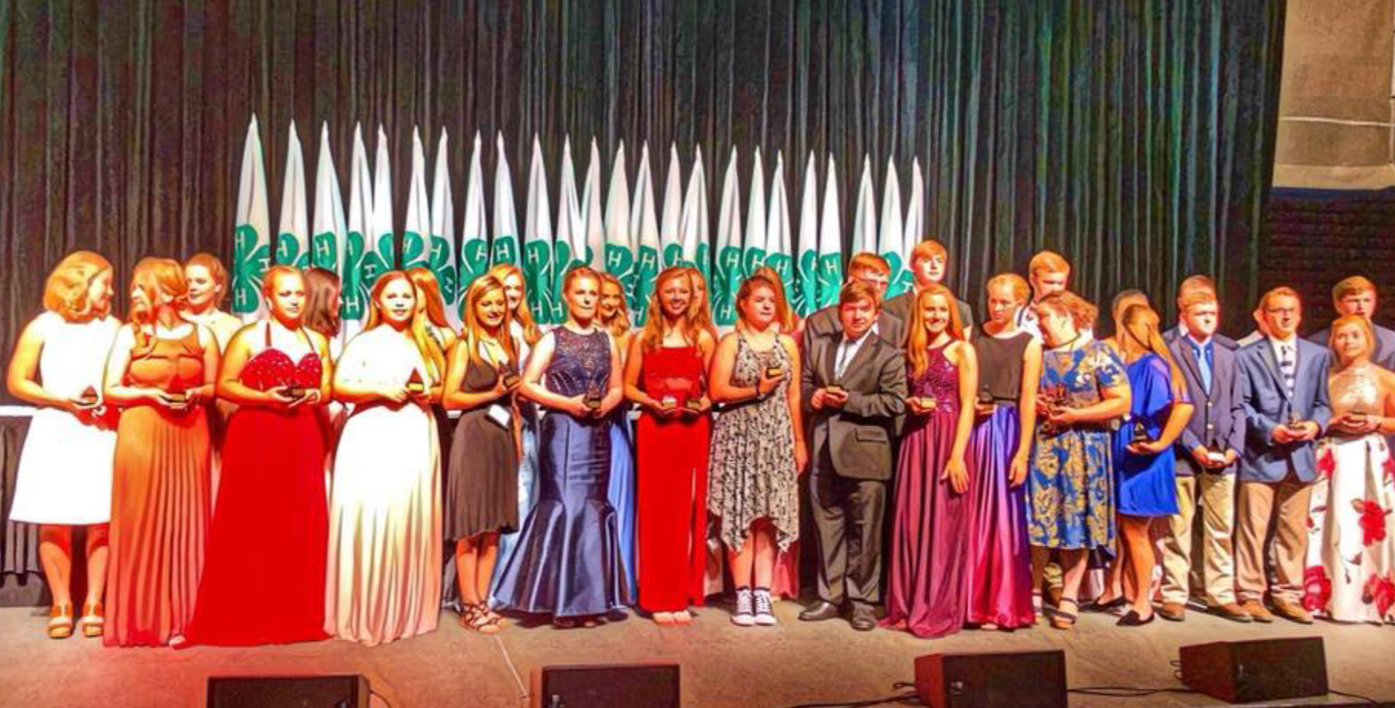 Tennessee 4-H Roundup 2018 - Level I Winners