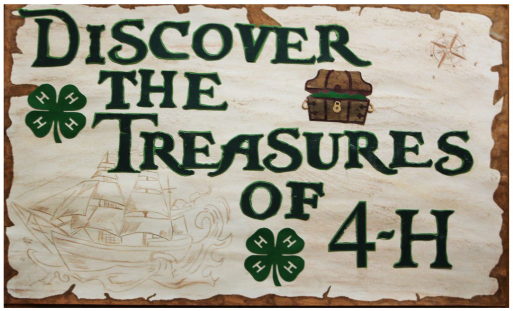 2017 State 4-H Poster Winners