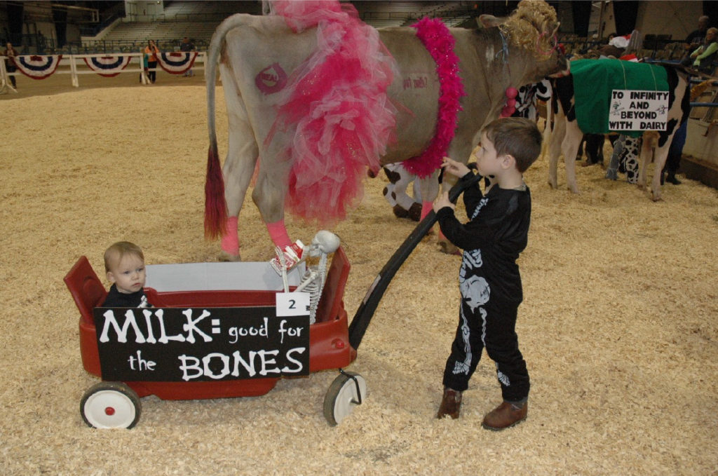 2017 State Dairy Show - Milk and the Bones