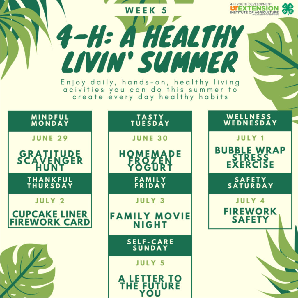 4-H: A Healthy Livin' Summer - Week 5 - Enjoy daily, hands-on, healthy living activities you can do this summer to create every day healthy habits. Mindful Monday – June 29 Gratitude Scavenger Hunt Tasty Tuesday – June 30 Homemade Frozen Yogurt Wellness Wednesday – July 1 Bubble Wrap Stress Exercise Thankful Thursday – July 2 Cupcake Liner Firework Card Family Friday – July 3 Family Movie Night Safety Saturday – July 4 Firework Safety Self-care Sunday – July 5 A Letter to the Future You