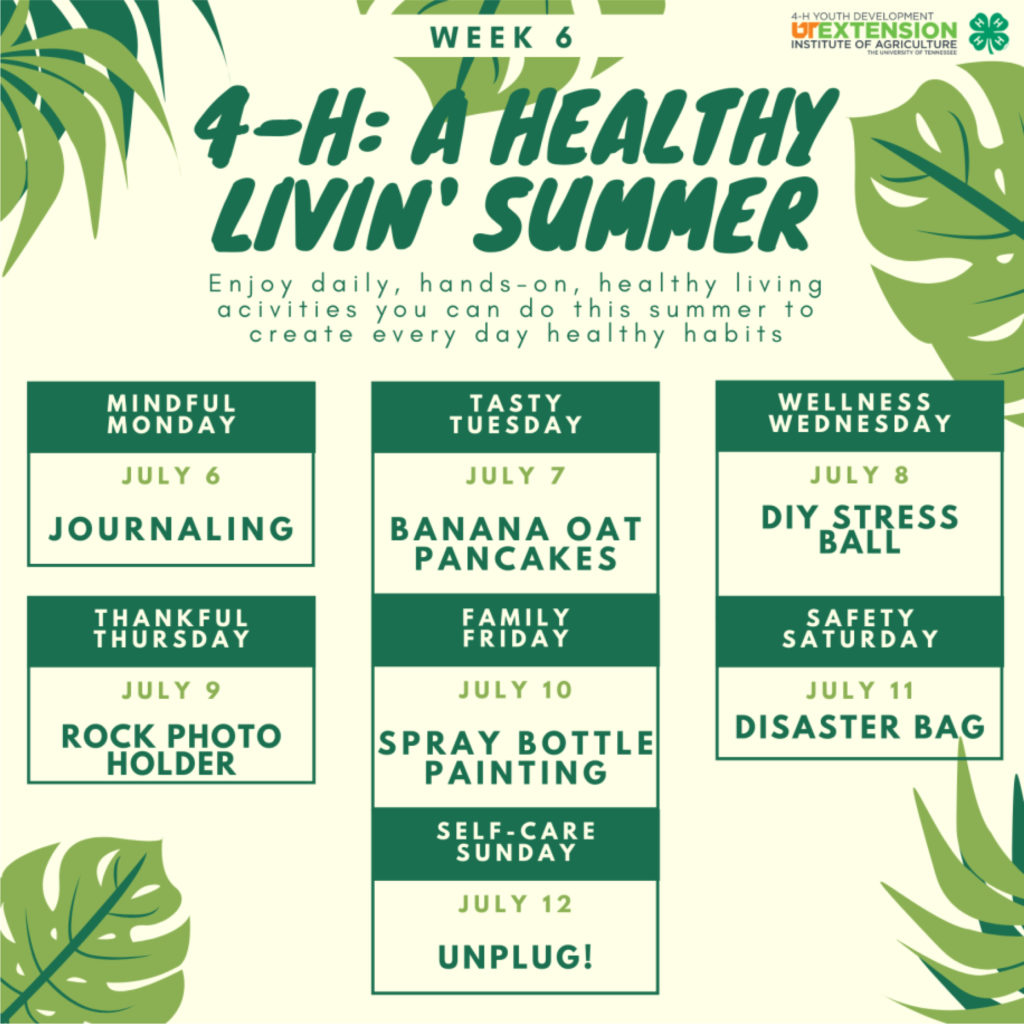4-H: A Healthy Livin' Summer - Week 6 - Enjoy daily, hands-on, healthy living activities you can do this summer to create every day healthy habits. Mindful Monday – July 6 Journaling Tasty Tuesday – July 7 Banana Oat Pancakes Wellness Wednesday – July 8 DIY Stress Ball Thankful Thursday – July 9 Rock Photo Holder Family Friday – July 10 Spray Bottle Painting Safety Saturday – July 11 Disaster Bag Self-care Sunday – July 12 Unplug!