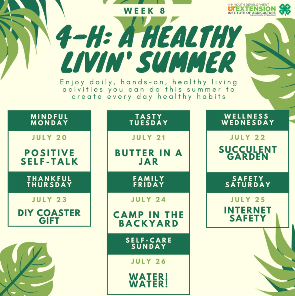 4-H: A Healthy Livin' Summer - Week 8 - Enjoy daily, hands-on, healthy living activities you can do this summer to create every day healthy habits. Mindful Monday – July 20 Positive Self-Talk Tasty Tuesday – July 21 Better In A Jar Wellness Wednesday – July 22 Succulent Garden Thankful Thursday – July 23 DIY Coaster Gift Family Friday – July 24 Camp in the Backyard Safety Saturday – July 25 Internet Safety Self-care Sunday – July 26 Water! Water!