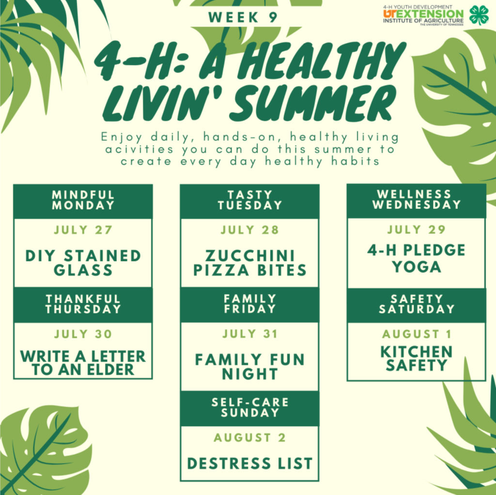 4-h: A Healthy Livin' Summer - Week 9 - Enjoy daily, hands-on, healthy living activities you can do this summer to create every day healthy habits. Mindful Monday – July 27 DIY Stained Glass Tasty Tuesday – July 28 Zucchini Pizza Bites Wellness Wednesday – July 29 4-H Pledge Yoga Thankful Thursday – July 30 Write a Letter to an Elder Family Friday – July 31 Family Fun Night Safety Saturday – August 1 Kitchen Safety Self-care Sunday – August 2 Destress List