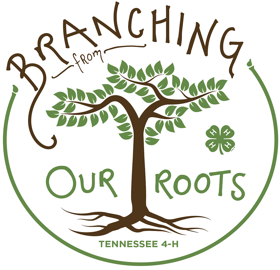 2018 4-H Theme: Branching Out from Our Roots