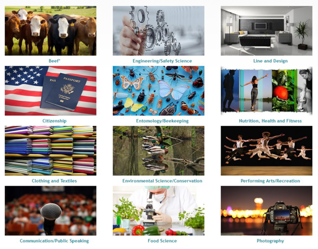 Curriculum Corner Website Updates