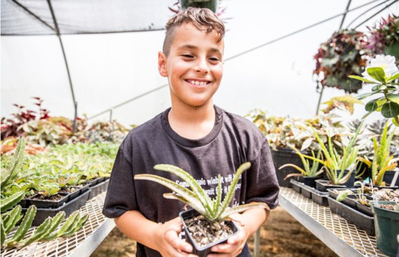 Boy With Potted Plant