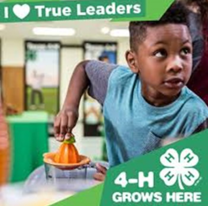 I Love True Leaders - 4-H Grows Here