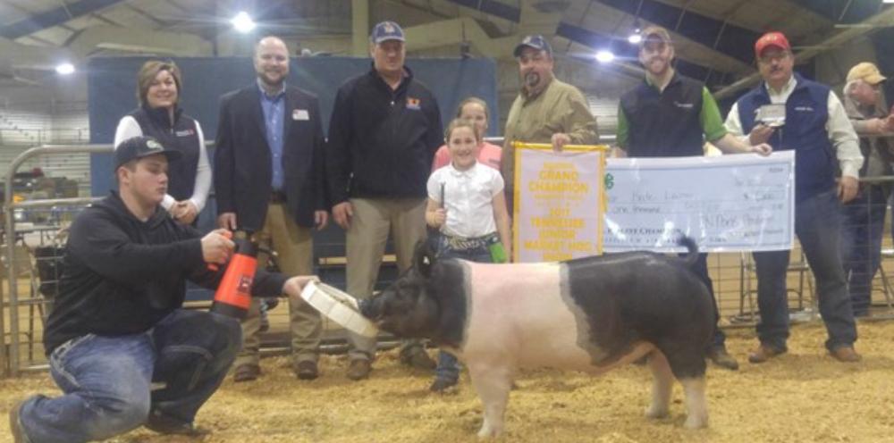 2017 Tennessee Junior Market Hog Show Results - Reserve Champion Market Hog: Kate Lamon, Giles 272 lb.