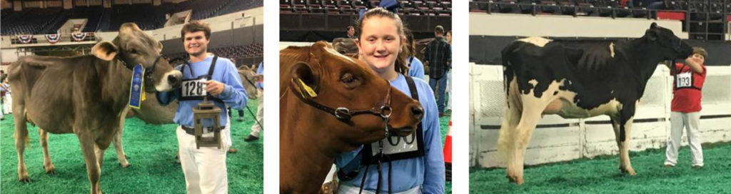Marshall County 4-H Dairy Members Receive National Honors