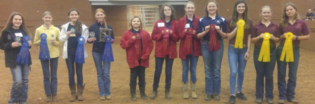 Hippology Junior Individuals Results - 35 individuals competing 1 - Rebecca Whitten, Sumner County 2 - Josie Mansfield, Gibson County 3 - Madie Mikesell, Blount County 4 - Rose Goodwin, Lawrence County 5 - Laurel Cox, Bedford County 6 - Ava Rose, Gibson County 7 - Elizabeth Spaller, Blount County 8 - Baylee Otey, Lawrence County 9 - Evelyn Jones, Putnam County 10 - Brooklyn Knopp, Maury County