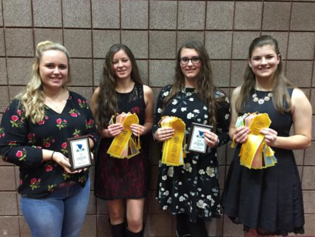 Tennessee 4-H Horse Program Youth Earn National Recognition