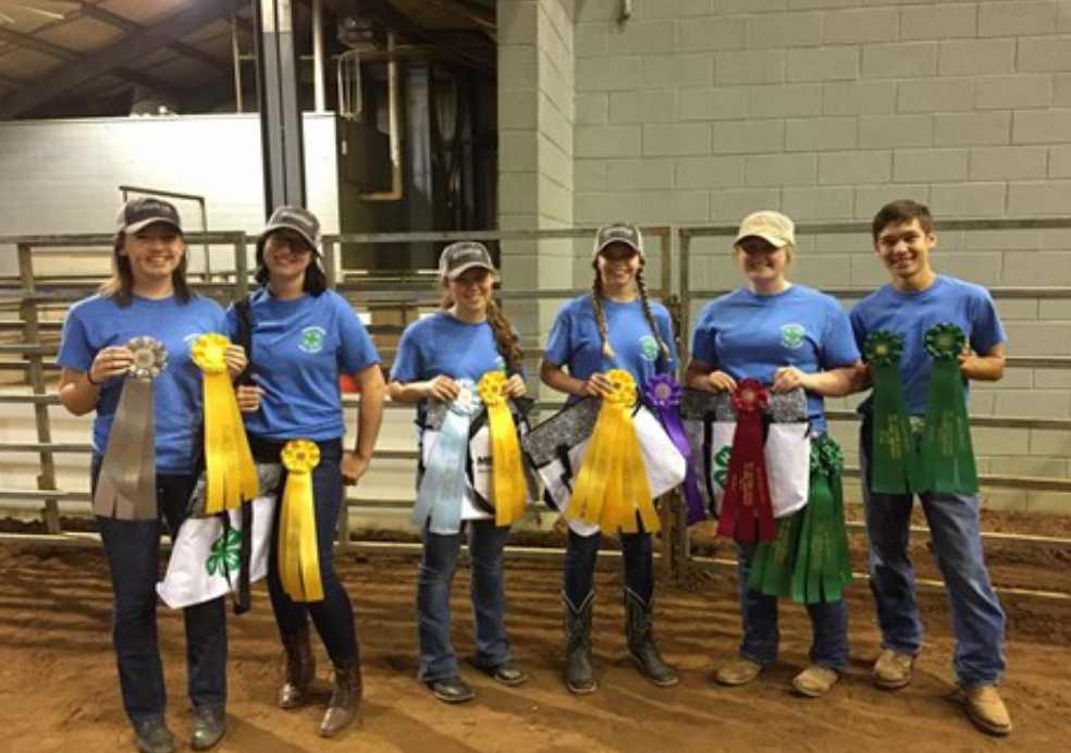 Tennessee 4-H Members Excel at Southern Regional Horse Championships - The Blount County horse bowl team took third place in a very tough compe- tition. Team members were Rachel Ot- tinger, Siena Spanyer, Madeline Parr and Jeri McCardel. The Madsion Coun- ty team of Taylor Perry, Katherine Thierfelder, Abby McCalmon and Zach McCarver placed sixth overall. Taylor Perry was second high individual in the contest.
