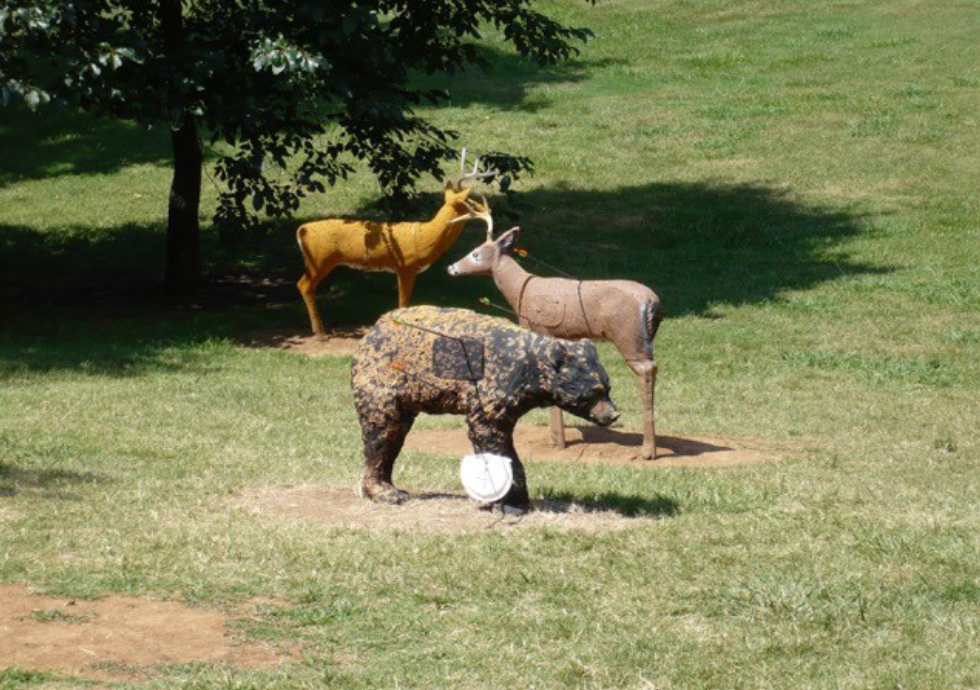 Target Smart Camp: July 4-7 atRidley in Columbia - Clay Deer and Bear Shooting Targets