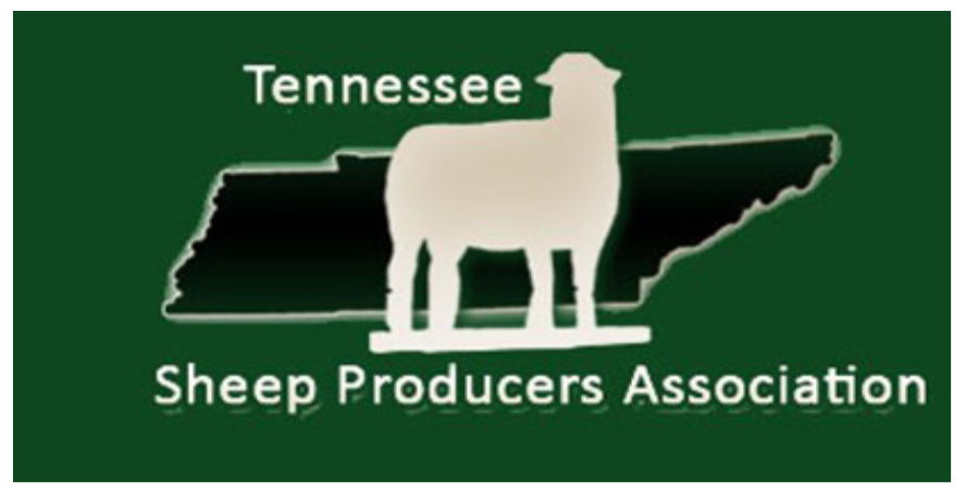 Tennessee Sheep Producers Association