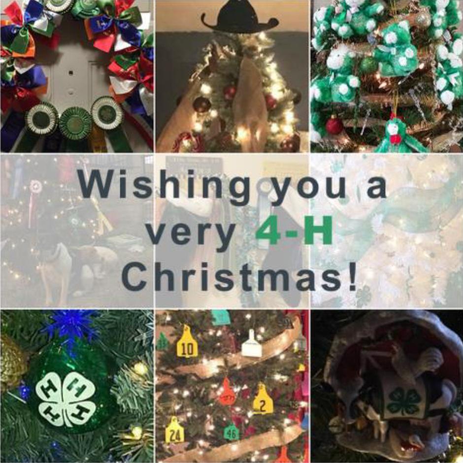 Wishing You A Very 4-H Christmas