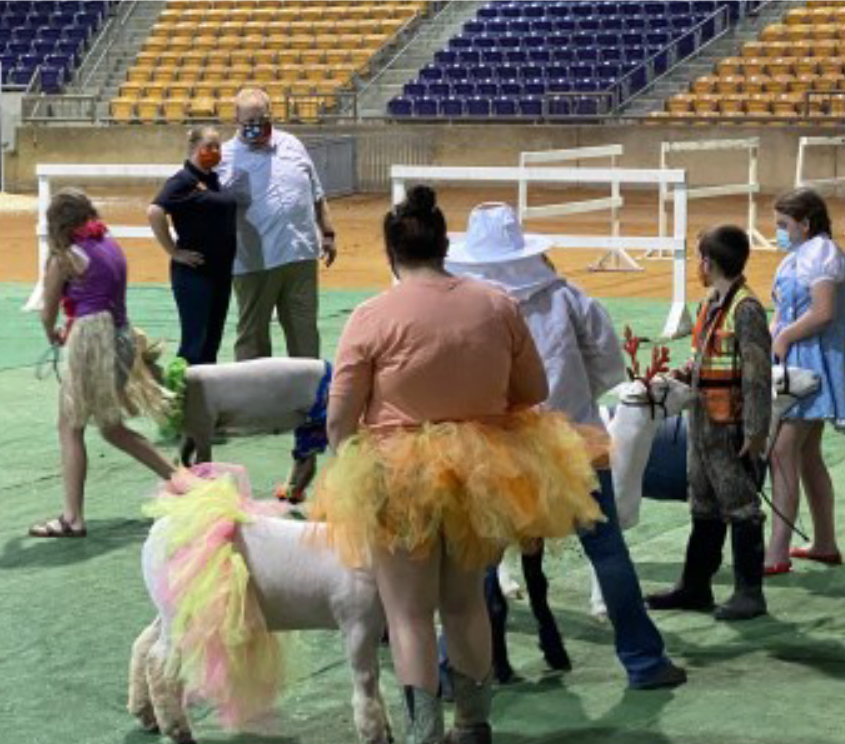 Tennessee Tech University - 2020 Tennessee Youth Sheep Exposition - 4-H\ers showing their sheep