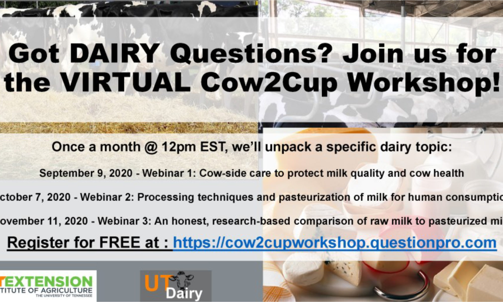Got DAIRY Questions? Join us for the Virtual Cow2Cup Workshop! Once a month @ 12 PM EST, we'll unpack a specific dairy topic: September 2, 2020 – Webinar 1: Cow-side care to protect milk quality and cow heath October 7, 2020 – Webinar 2: Processing techniques and pasteurization of milk for human consumption November 11, 2020 – Webinar 3: An honest, research-based comparison of raw milk to pasteurized milk. Register for FREE at: https://cow2cupworkshop.questionpro.com