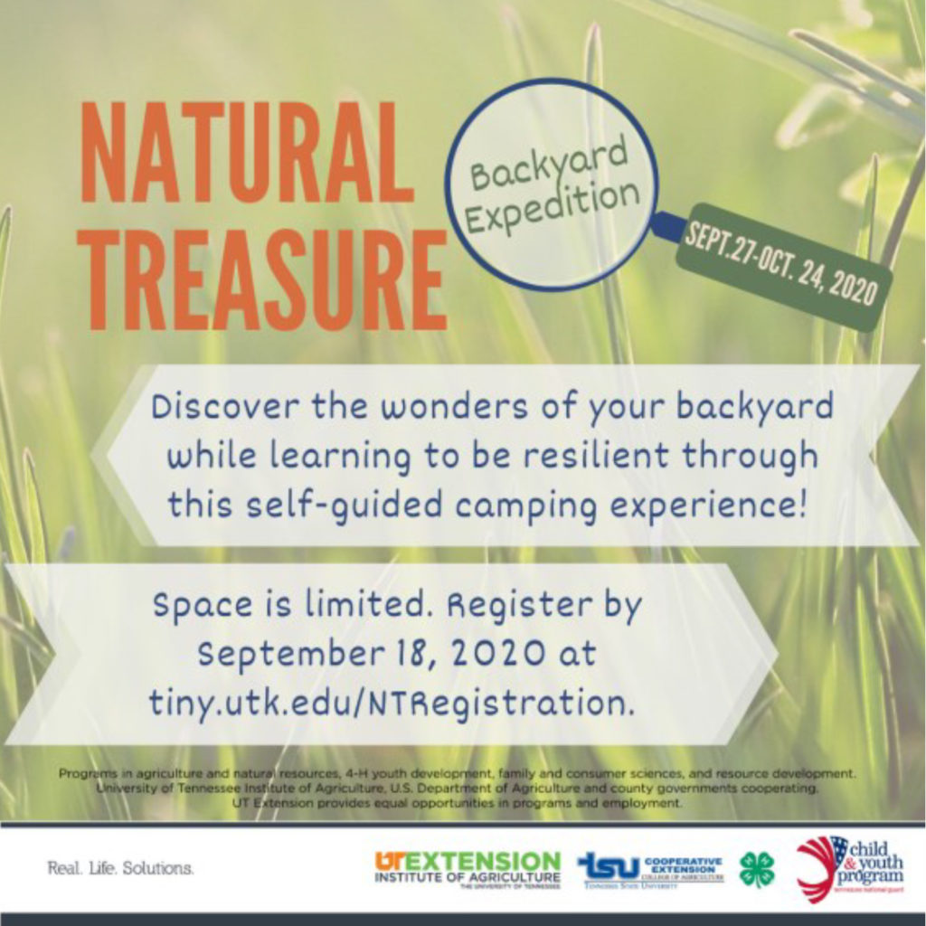 Natural Treasure Backyard Expedition Sept. 27 - Oct. 24, 2020. discover the wonders of your backyard while learning to be resilient through this self-guided camping experience! Space is limited. Register by September 18, 2020 at tiny.utk.edu/NTRegistration.