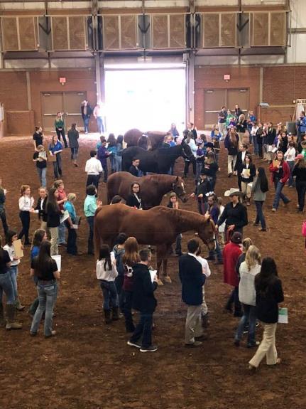 2021 UT Livestock Judging Camp